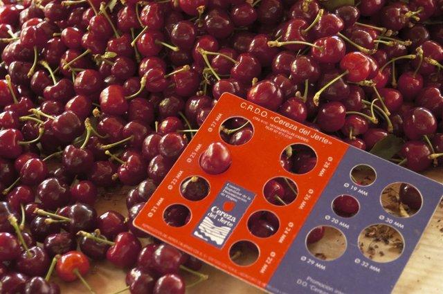 COMUNICADO: Salen al mercado las primeras cerezas certificadas del Jerte