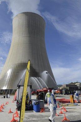 Militares de la Unidad Militar de Emergencias (UME) han realizado ejercicios de formación en emergencias nucleares en las centrales de Ascó y Vandellós II, ha informado este jueves la Asociación Nuclear Ascó-Vandellós II en un comunicado