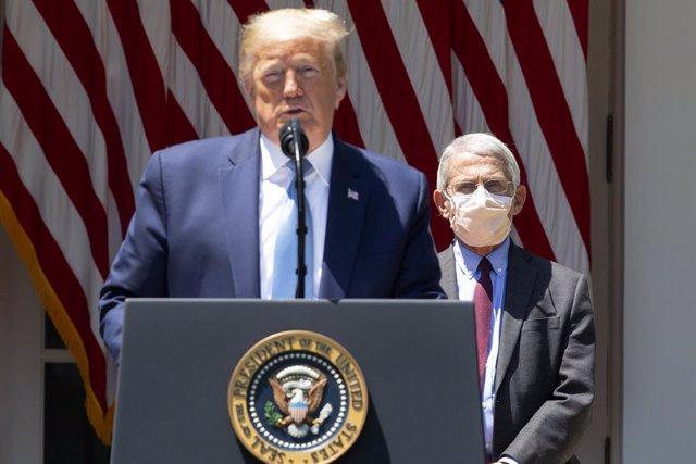 Coronavirus.-El epidemiólogo de la Casa Blanca afirma que la hidroxicloroquina n