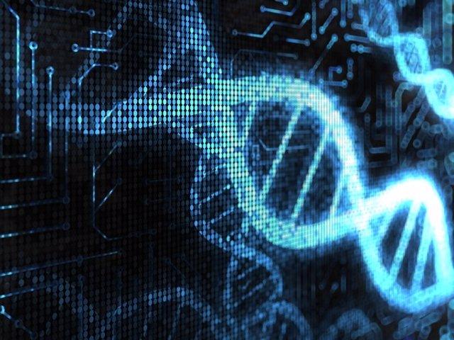 ADN, genética.
