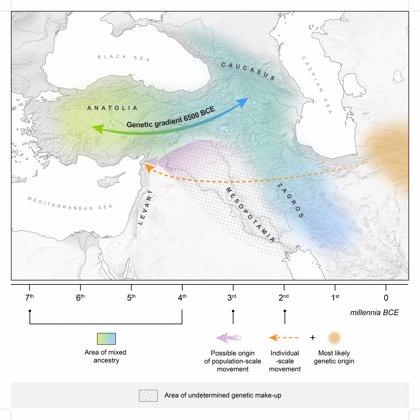 Hubo mezcla genética prolongada antes de las primeras ciudades del mundo