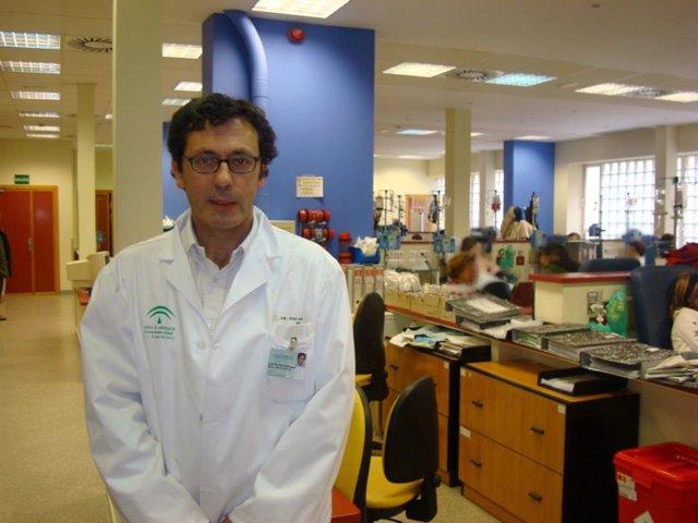 El jefe de Servicio de Oncología Integral del Hospital Virgen del Rocío de Sevilla, Luis Paz-Ares.