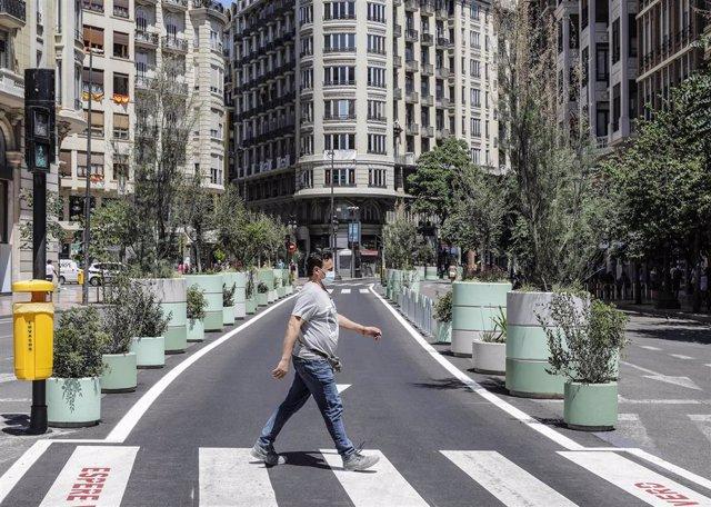 Un hombre cruza por un paso de cebra al lado de los maceteros colocados en la Plaza del Ayuntamiento de Valencia