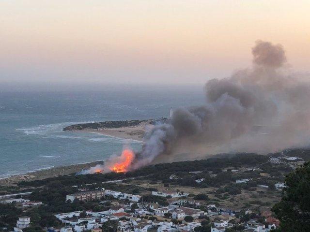 Incendio forestal en el Pinar de los Caños de Barbate (Cádiz)