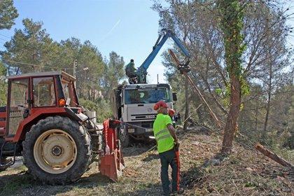 La Diputación de Barcelona destina cerca de 7 millones a prevención de incendios forestales