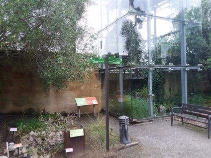 El Botánico reabre sus puertas este sábado con limitación de aforo y en dos franjas horarias