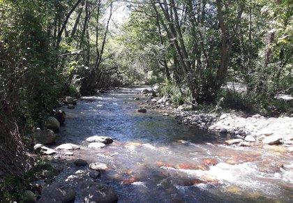 La CHE realiza 9 actuaciones de mejora de la capacidad de desagüe en cauces de La Rioja en estos primeros meses del 2020