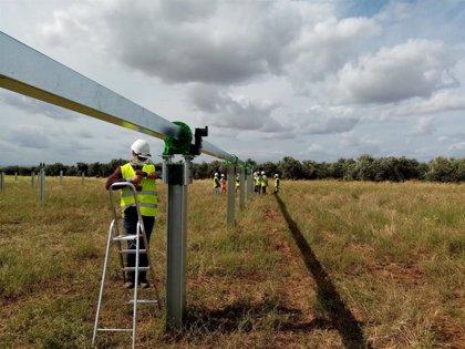Las plantas fotovoltaicas en construcción de Endesa en Carmona (Sevilla) generarán 300 empleos