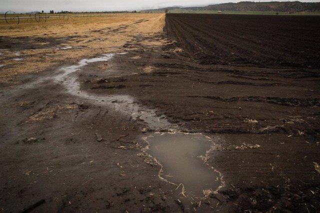 Clima.- El FMI advierte de que los inversores subestiman los riesgos por el camb