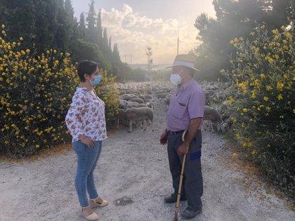 Ayudas de la Junta para la ganadería extensiva y las 28.000 cabezas transhumantes de la provincia de Jaén