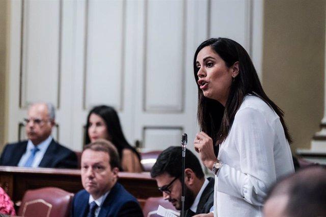 La diputada del Grupo Mixto, Vidina Espino, en el Parlamento
