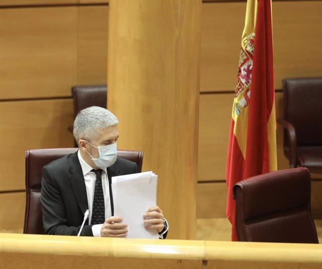 El ministro de Interior, Fernando Grande-Marlaska, ordena unos papeles durante su comparecencia ante la Comisión de Interior en el Senado para informar sobre las líneas generales de la política de su Departamento, en Madrid (España), a 29 de mayo de 2020.
