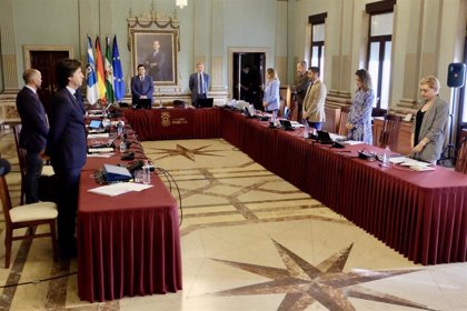 Respaldo unánime del Pleno de Huelva a una inyección de 2,1 millones para medidas económicas y sociales ante el covid-19