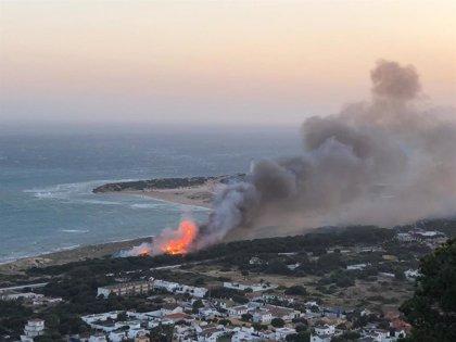 El incendio de Los Caños de Meca (Cádiz) afecta a media hectárea de matorral y pinar