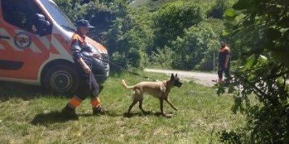 Finaliza sin éxito la sexta jornada de búsqueda del joven desaparecido en Campoo
