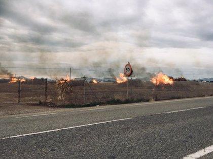 La quemas agrícolas continúan a pesar de que están prohibidas durante el Estado de Alarma