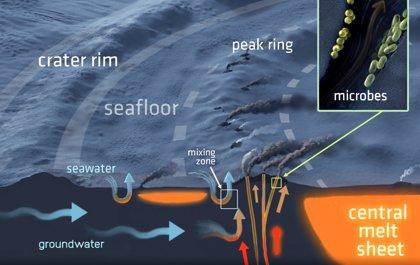 El cráter Chicxulub albergó un enorme sistema hidrotermal