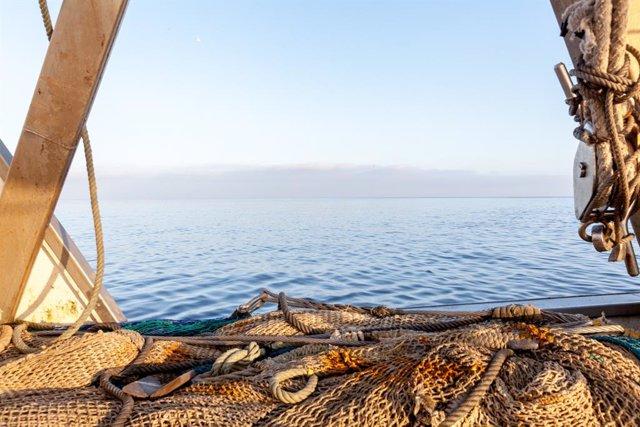 Economía.- El sector pesquero español y argentino se alían para la gestión de lo