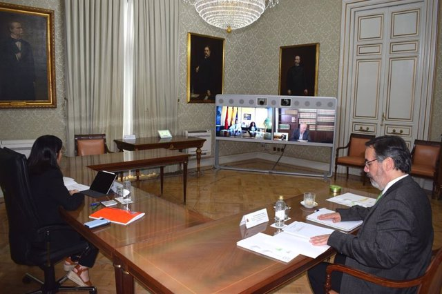 Reunión por videoconferencia de la ministra Darias con Javier Remírez