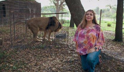 Conmoción en Tiger King: Carole Baskin se hace con el zoo de Joe Exotic