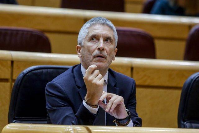 El ministro del Interior, Fernando Grande-Marlaska, momentos antes del inicio del pleno en el Senado