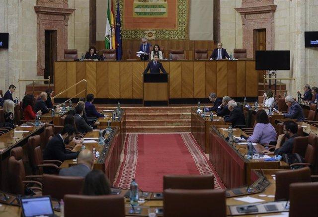 Sesión presencial de la Diputación Permanente del Parlamento de Andalucía. Imagen de archivo.