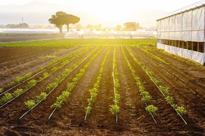 La Junta aporta 6,5 millones y resuelve 146 nuevos proyectos de creación de empresa de jóvenes agricultores extremeños