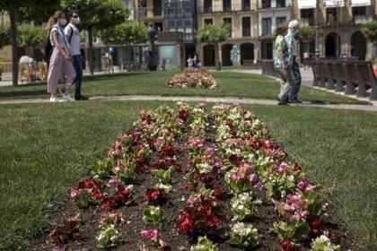 El Ayuntamiento de Pamplona comienza esta semana la plantación de parterres de flor de primavera