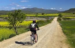 Una cicloturista recorre una de las vías ciclables de Navarra