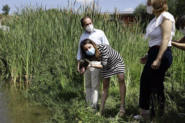 La delegada de Cultura, Turismo y Deporte del Ayuntamiento de Madrid, Andrea Levy, libera a unos de los de 15 ejemplares de galápagos leprosos que soltarán en el río Manzanares.