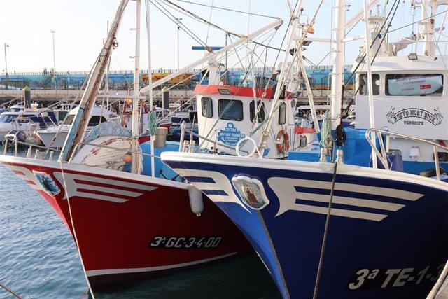 Comienza la campaña de pesca de atún rojo para 249 embarcaciones en las islas