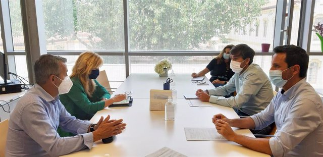 Reuniones de la Diputación con las federaciones deportivas para retomar la actividad lo antes posible