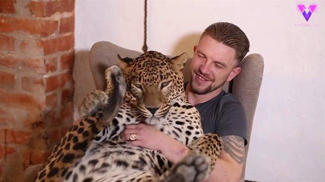 Un ex cuidador de un zoológico de Rusia adopta a un leopardo después de que éste cayera enfermo tras su marcha