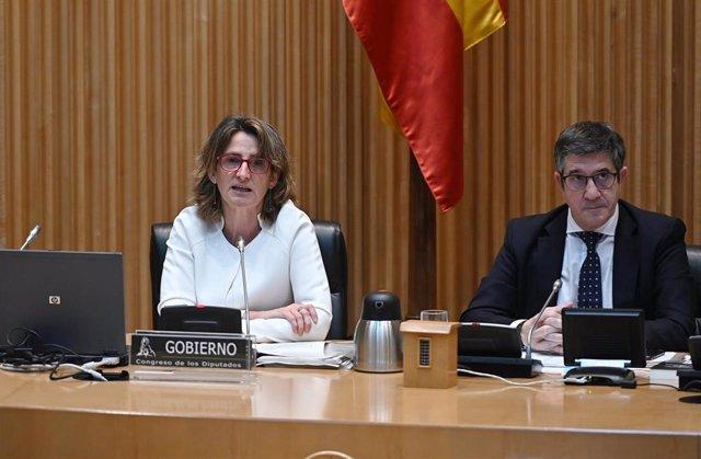 La vicepresidenta cuarta y ministra para la Transición Ecológica y el Reto Demográfico, Teresa Ribera, durante su comparecencia ante la Comisión para la Reconstrucción Social y Económica del Congreso., en Madrid (España), a 4 de mayo de 2020.