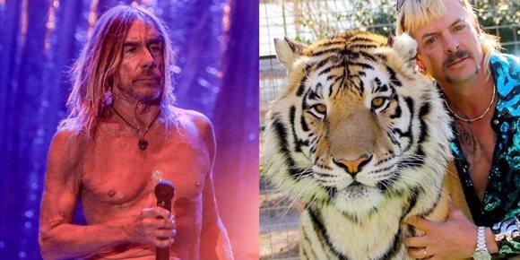 2. Iggy Pop: el auténtico Tiger King