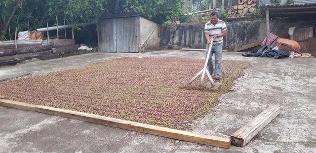 EthicHub comercializará el café de sus agricultores