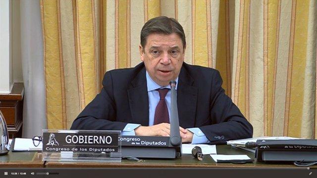 El ministro de Agricultura, Pesca y Alimentación, Luis Planas, en su comparecencia en el Congreso de los Diputados