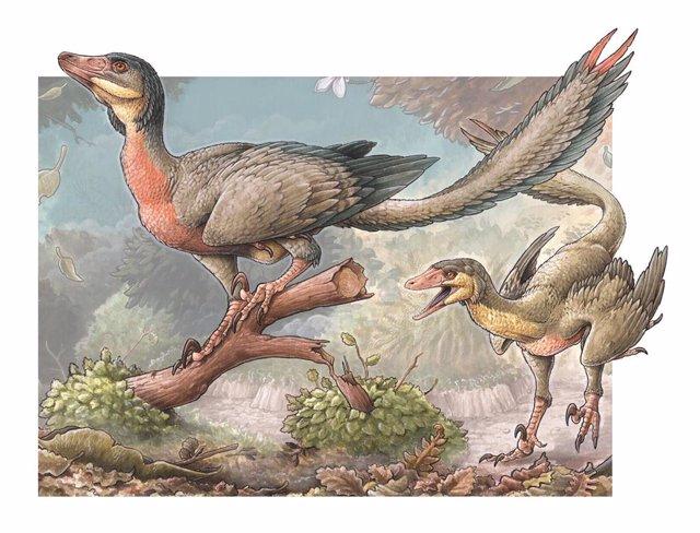 Recreación de Overoraptor chimentoi