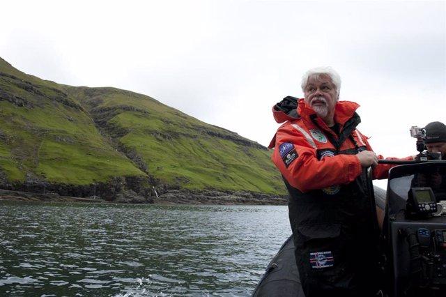 Discovery Channel celebra el Día Mundial de los Océanos con el estreno de varios documentales