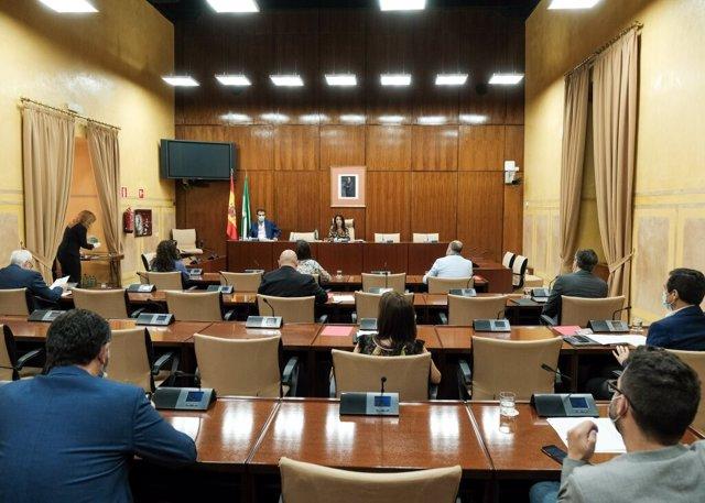 Constitución de la Comisión de Estudio sobre recuperación económica y social de Andalucía a causa de la pandemia del Covid-19 en el Parlamento de Andalucía.