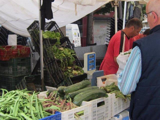 Verduras, hortalizas, mercado agroecológico