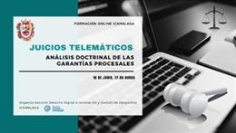 Cartel webinar juicios telematicos