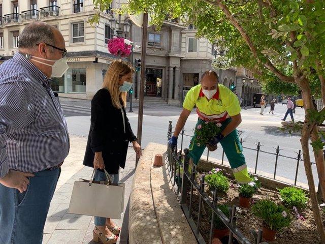 Plantación de flores en Granada