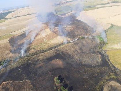 Extinguido el incendio agrícola declarado en Palma del Río (Córdoba) el viernes