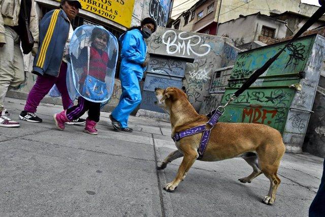 Bolivia ha superado los 13.000 casos de la COVID-19 y el Gobierno interino ha decidido cerrar los municipios del trópico de Cochabamba ante el alto número de contagios y fallecidos registrados en los últimos días.