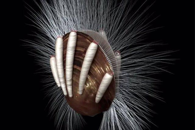 Evidencia de parásitos en un fósil de 512 millones de años
