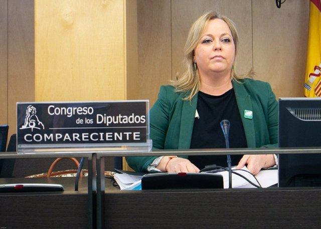 Mari Carmen Morillas, de la Confederación Española de Asociaciones de Madres y Padres del Alumnado (CEAPA), este lunes 8 de junio en el Congreso.