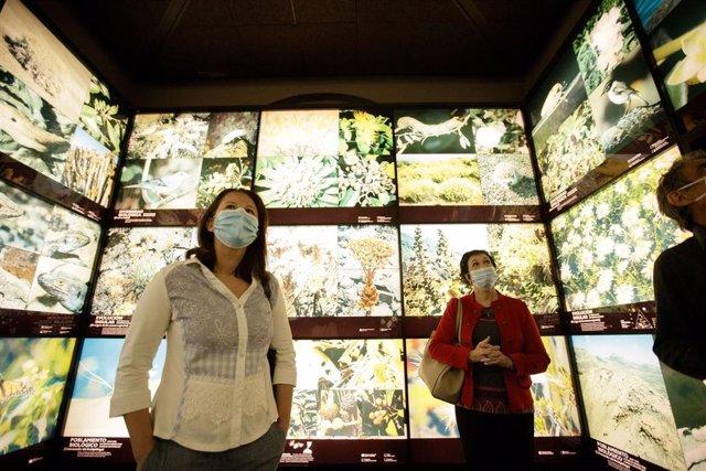 La consejera de Museos del Cabildo de Tenerife, Concepción Rivero, en la reapertura al público del MUNA