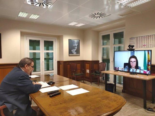 Comisión Provincial del PFEA, presidida por el subdelegado del Gobierno en Málaga, Teófilo Ruiz, celebrada por vía telemátic,