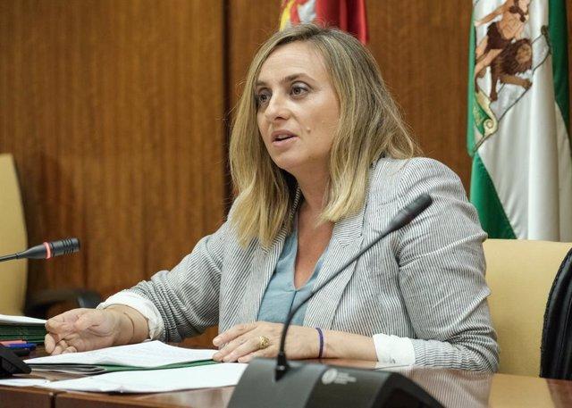 La consejera de Fomento, Infraestructuras y Ordenación del Territorio, Marifrán Carazo en comisión parlamentaria.